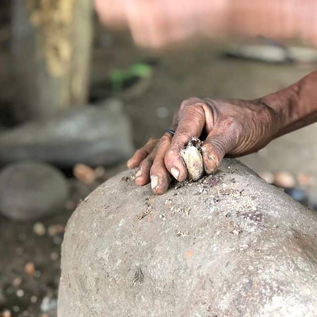 Kenari Nut is native to Indonesia