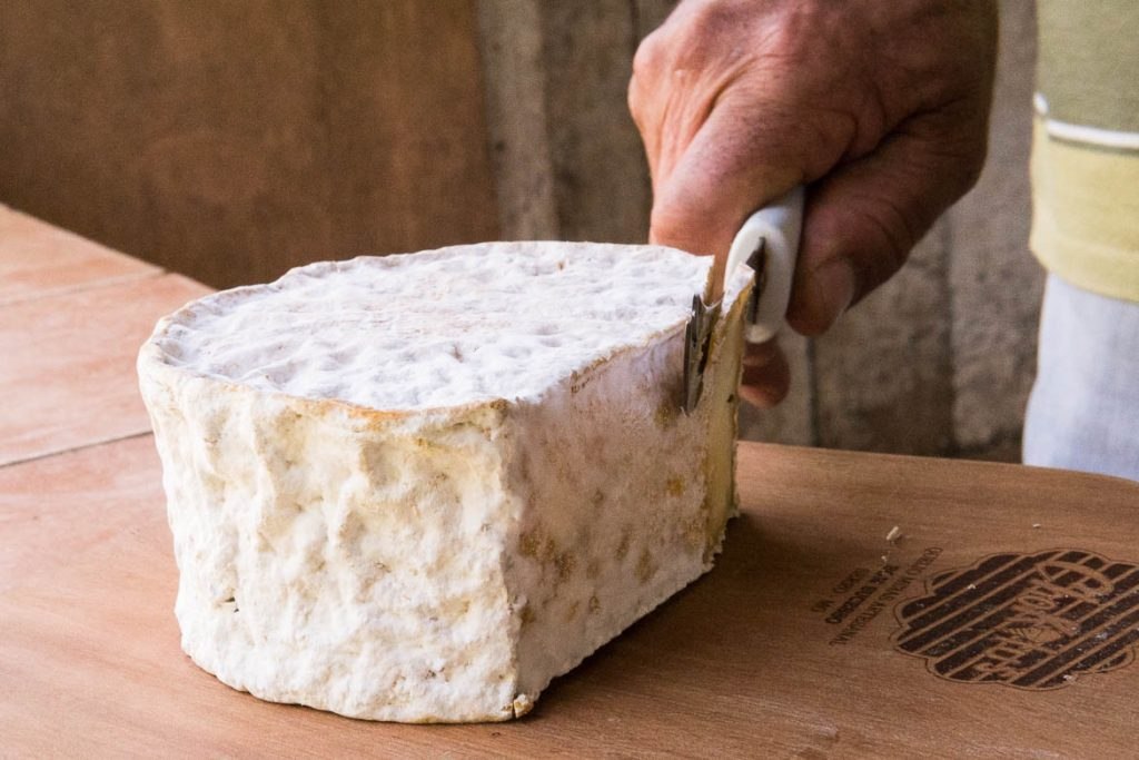 Serro cheese from producer Chokito in Serro Minas Gerais Brazil