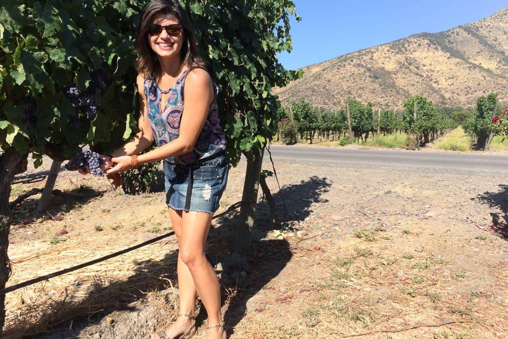 Karina do Food'n Road nos vinhedos de uma vinícola no Vale de Casablanca, perto de Santiago, Chile