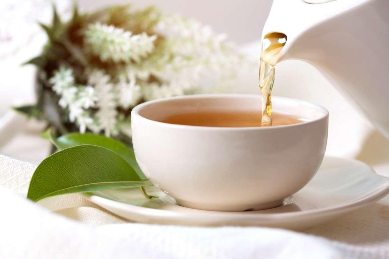 servindo chá branco em uma xícara de chá