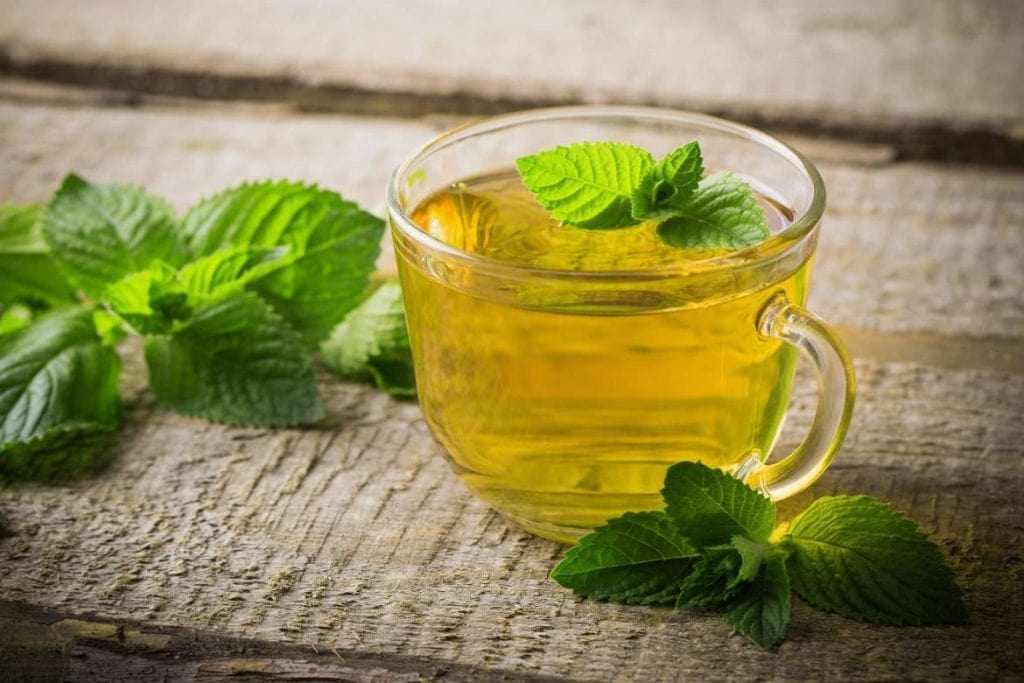 mint infusion with mint leaves in a cup ready to drink