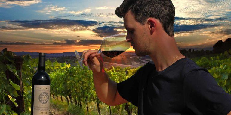 Tour educativo com degustação de vinhos orgânicos