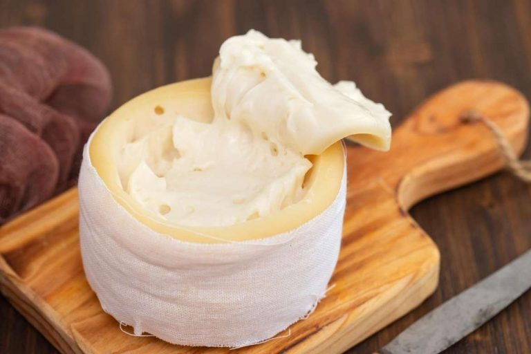 Guia dos queijos típicos de Portugal