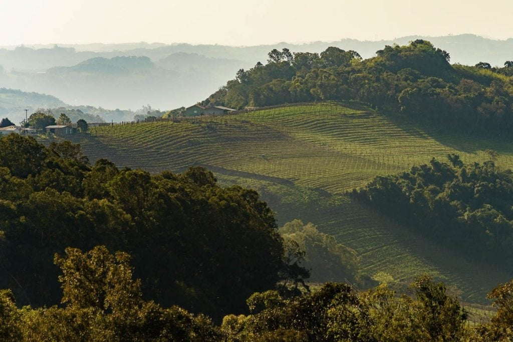 vista do vale dos vinhedos na Serra Gaúcha do Brasil tornou-se um destino muito turístico para o vinho no país