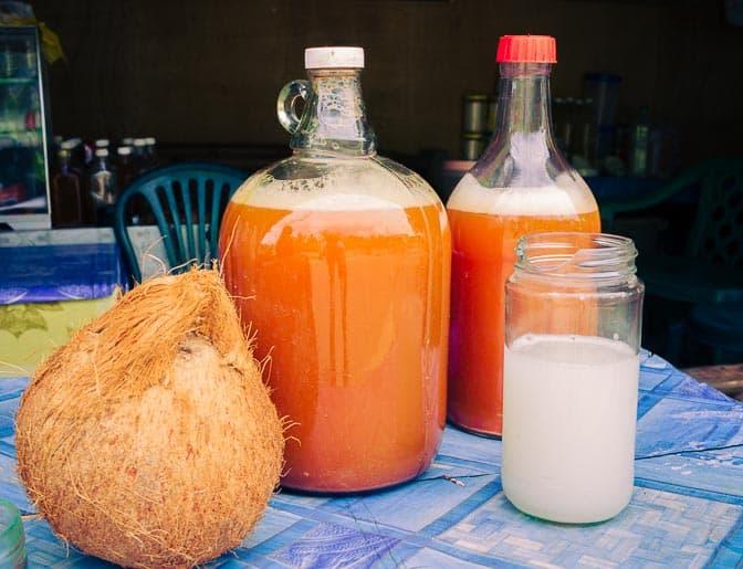 Tuba, o vinho de coco das Filipinas