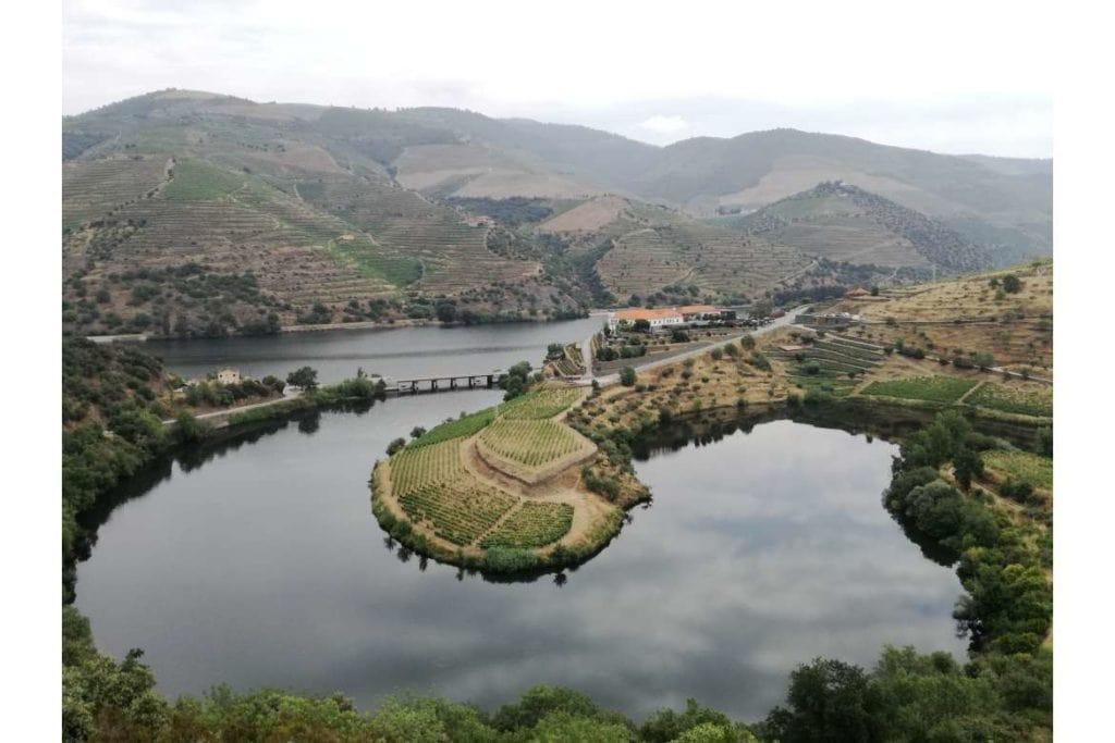 scenic view in Douro valley during a private wine tour in Douro region