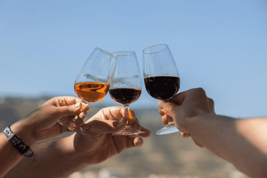 Photos of the Douro Valley Tour: Wine Tastings