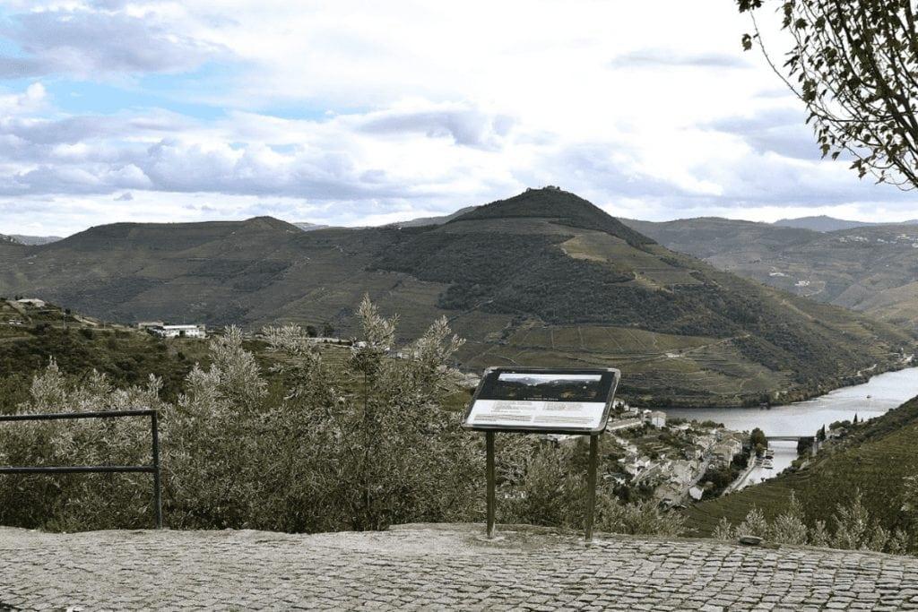 a Wine Tour in Porto
