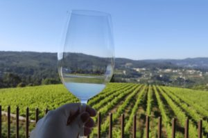 Green Wine Tour from Porto Portugal