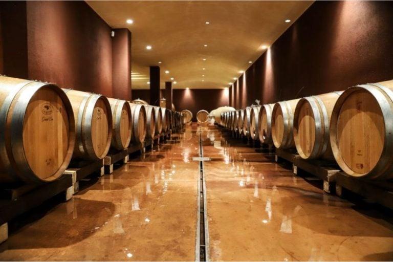Lake Garda: Wine Tour and Tasting Experience in Bardolino area