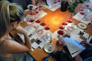 Wine Tour and Tasting in Bardolino Italy