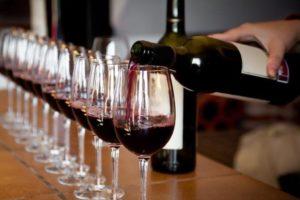 Douro Valley Wine Tour from Porto