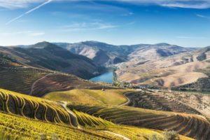 Douro Valley Tour Portugal